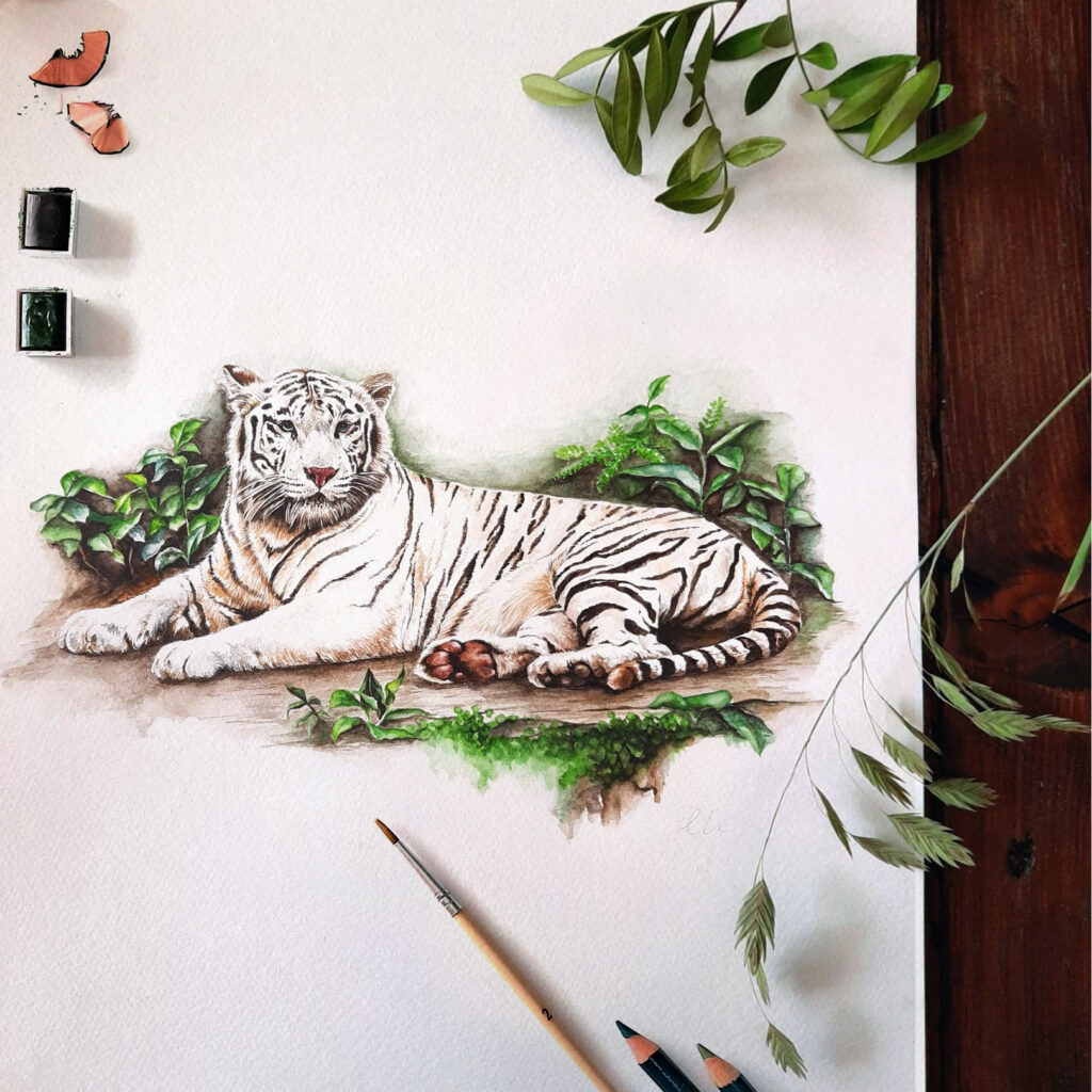 White Tiger Commission